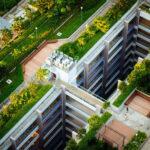 Dachbegrünung: Vorteile, Aufbau, Kosten