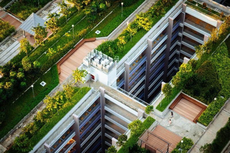 Dachbegrünung: Hausdach mit Pflanzen